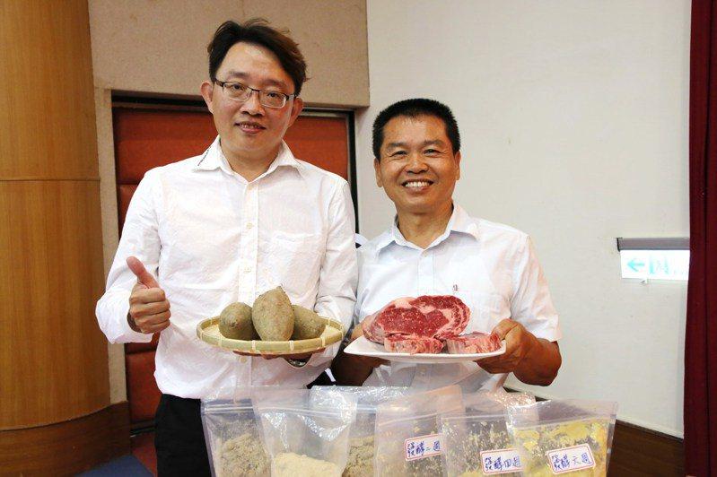 肉牛吃了益生菌甘藷青貯飼料,生長效果佳,在牛肉油花表現皆可達到Choice級以上。圖/嘉大提供
