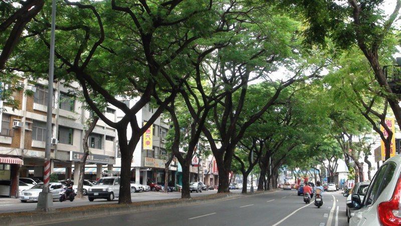 路樹可增加道路的綠色空間。圖/聯合報系資料照片