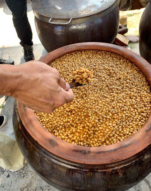 新來源醬園仍以古法釀造。圖/蔡珠兒提供