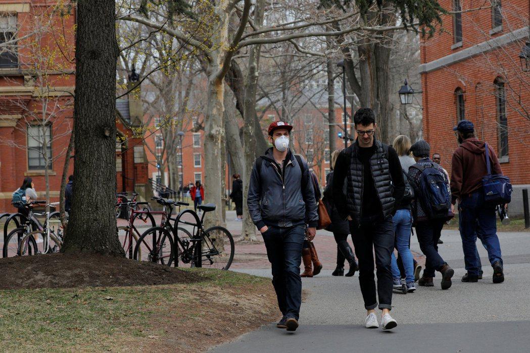 圖為哈佛校園。(路透)