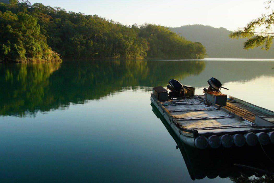 烏來杜鵑生長在北勢溪的溪邊岩石上,是岩生型的杜鵑,如今要一訪烏來杜鵑原生育地只能搭乘水上工具前往。 圖/林試所李俊緯提供