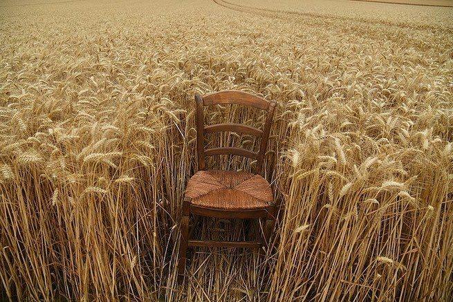 100位賓客坐在麥田旁的椅子上看秀,保持社交距離。圖/取自IG