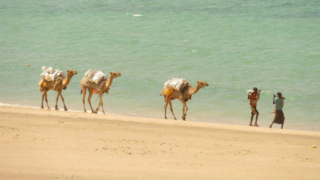 在距離台灣遙遠的「非洲之角」,與索馬利亞有著「統獨糾葛」的索馬利蘭,普遍不被國際...