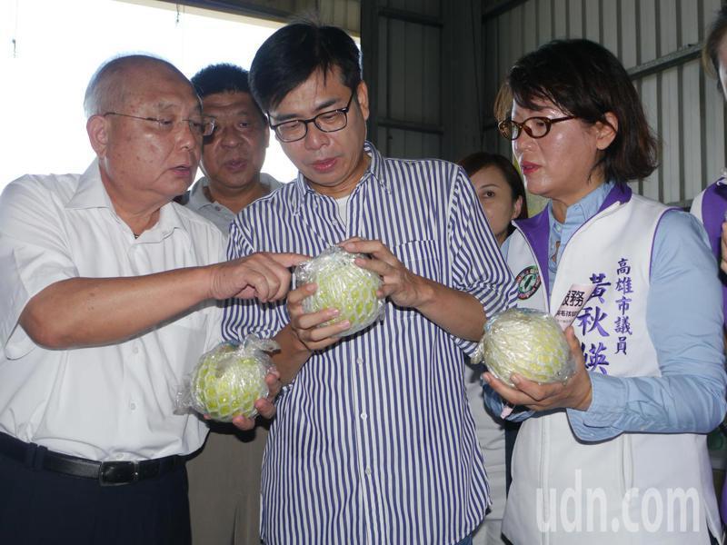 民進黨候選人陳其邁(中)今天上午到燕巢多功能集貨中心關心芭樂產銷情況,總幹事蕭富錦(左)在旁解說。記者徐白櫻/攝影