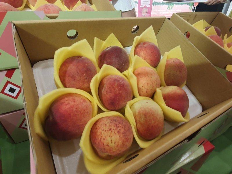 每年6月至8月是復興區拉拉山水蜜桃的盛產期,倘若無法親自到復興區品嚐泰雅媽媽們用...