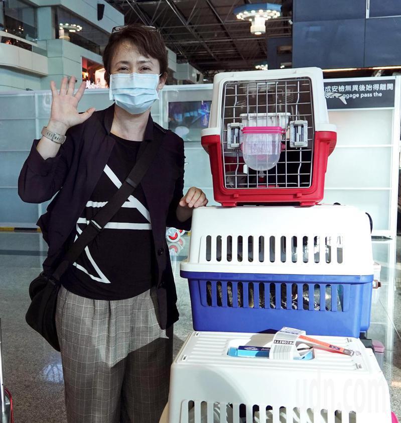 新任駐美代表蕭美琴(如圖)22日晚間搭乘長榮航空公司班機啟程前往美國履新,也把飼養的4隻愛貓一起運往美國照顧。記者陳嘉寧/攝影