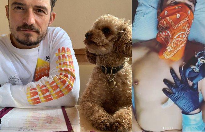 奧蘭多布魯痛失愛犬。圖/擷自IG