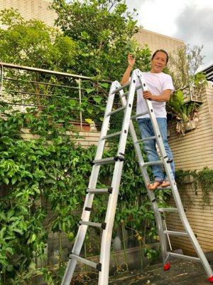 許傑輝享受種菜田園樂。 圖/摘自臉書