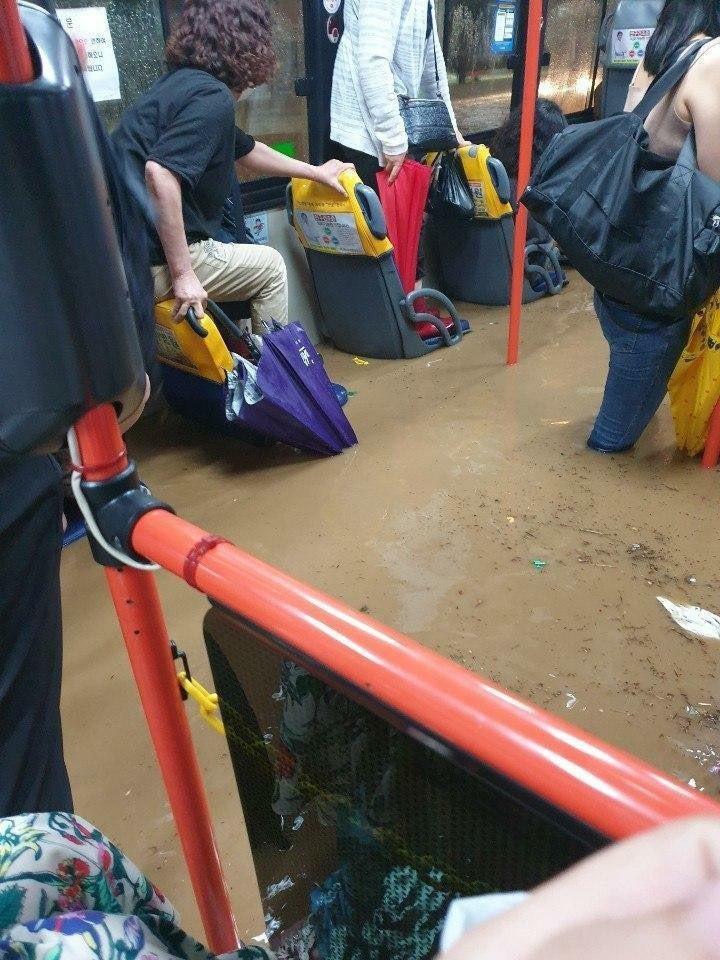 南韓釜山一輛公車內出現嚴重積水,乘客被迫站在座椅上避難。圖擷自Twitter