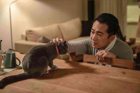 毛小孩的翻譯機?首部「寵物溝通」療癒台劇《黑貓知情》