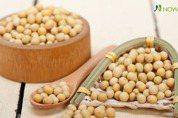 植物性蛋白質來源黃豆 日研究:可能增加胰臟癌風險
