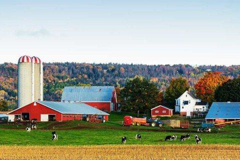 位於美國佛蒙特州卡博特小鎮的卡博特乳品合作社。 圖/HBR.org