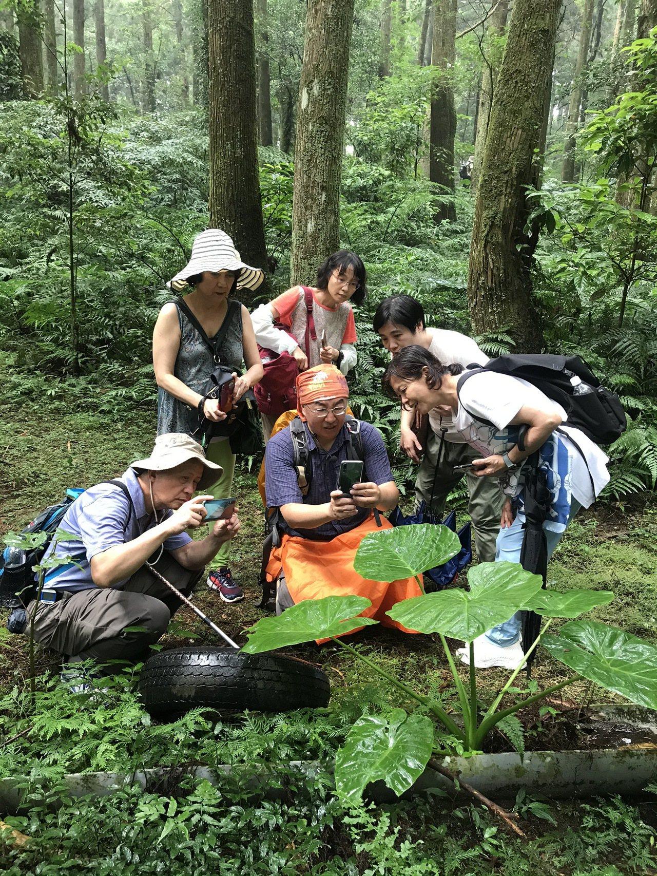 祥哥教學員近物攝影,拍出植物葉面的光影層次感。圖/林育如攝影