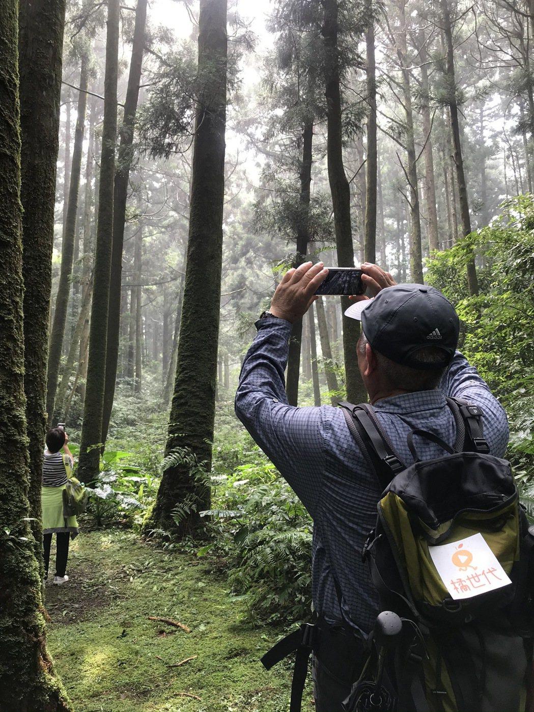 學員練習拍攝陽光灑落林間的氛圍。圖/林育如攝影