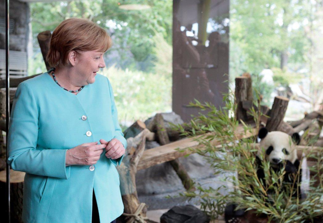 德國不擅運用權謀工具,處於國際政治的叢林顯得既內向又天真。圖為梅克爾觀賞中國致贈...