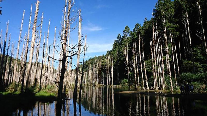▲阿溪縱走路線景點-水漾森林。(圖/Tripbaa趣吧!達人帶路)