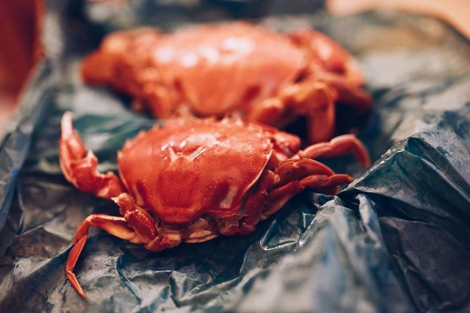 從阿姨手中收下的水煮螃蟹。 圖/施清元攝影