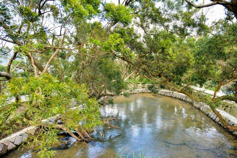 白石湖除了吊橋、同心池,還有許多幸福景點值得一探,例如水波綠蔭的古錐埤。 圖/台...