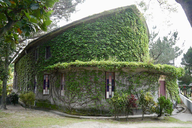 """樹藤纏繞的「天主教堂」,1962年天主教買下這裡,打造的是以聖經""""諾亞方舟""""為主軸的教堂。"""