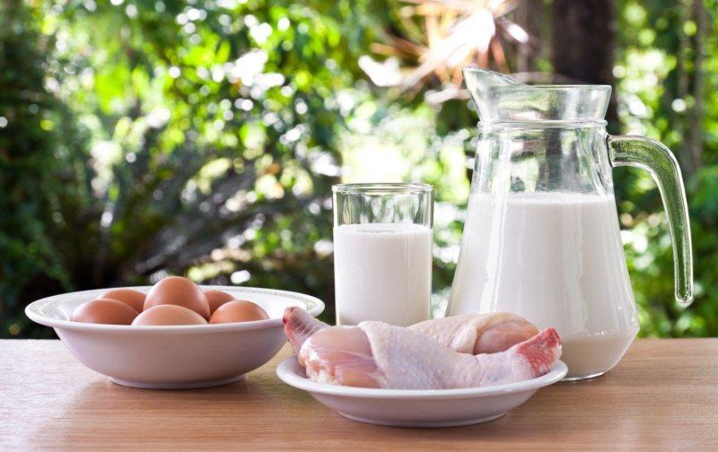 蛋白質是最需要被強調的營養素,它的功能在於加強免疫力、以及可提升肌肉的質與量。 ...