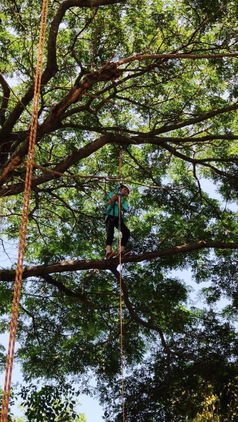 攀樹課程是環球科技大學觀光與生態旅遊系的主要課程之一,小朋友第一次體驗技巧雖生疏,但勇氣十足。圖/環球科大提供