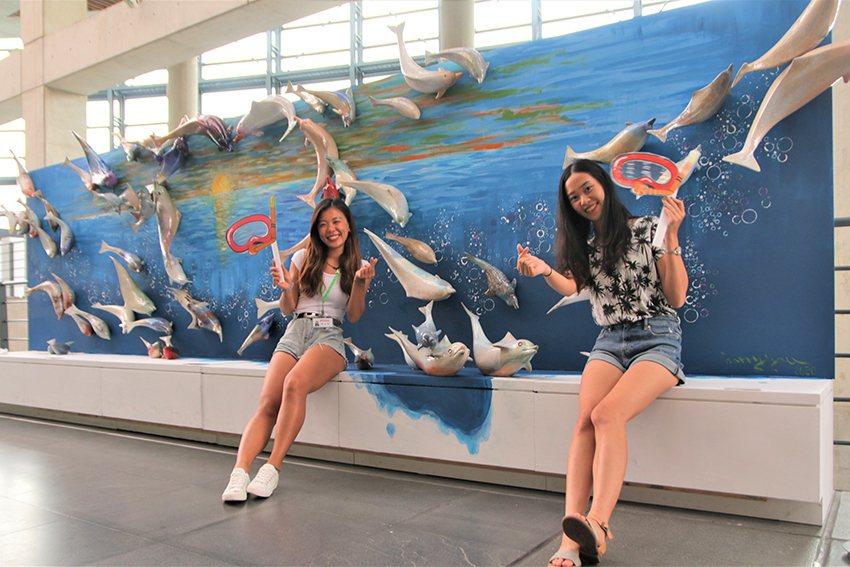 游忠平以中華白海豚為主角的《愛相隨》,66隻姿態生動、喜歡跳躍的海豚連結成愛心,...