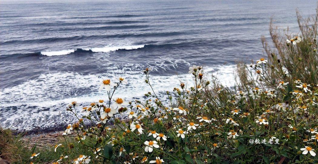 沒有辜負這片海, 還可以和花草來個親密接觸!