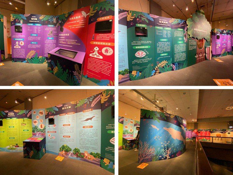 台北市教育局攜手台北市立動物園舉辦「聲音之美生物特展」,將於明天正式開展。圖/台北市立動物園提供
