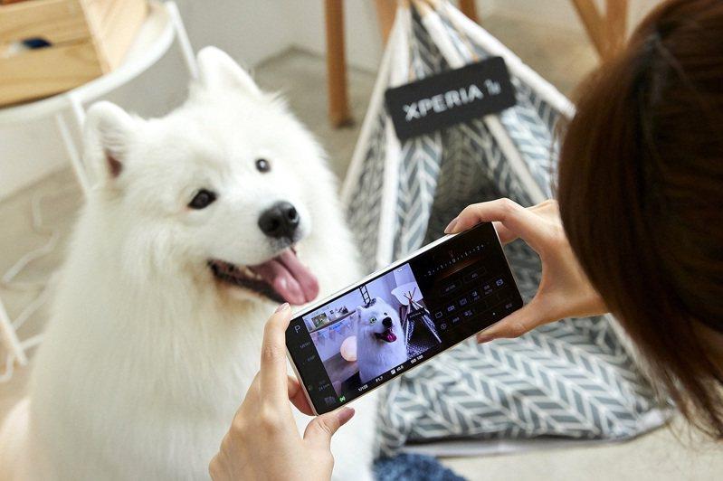 Xperia 1 II有寵物眼追蹤對焦功能。  索尼/提供
