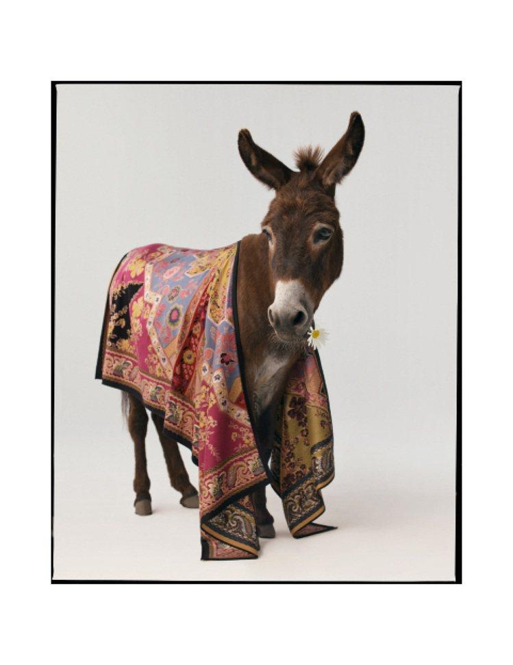 驢子是ETRO絲巾的模特兒。圖/ETRO提供
