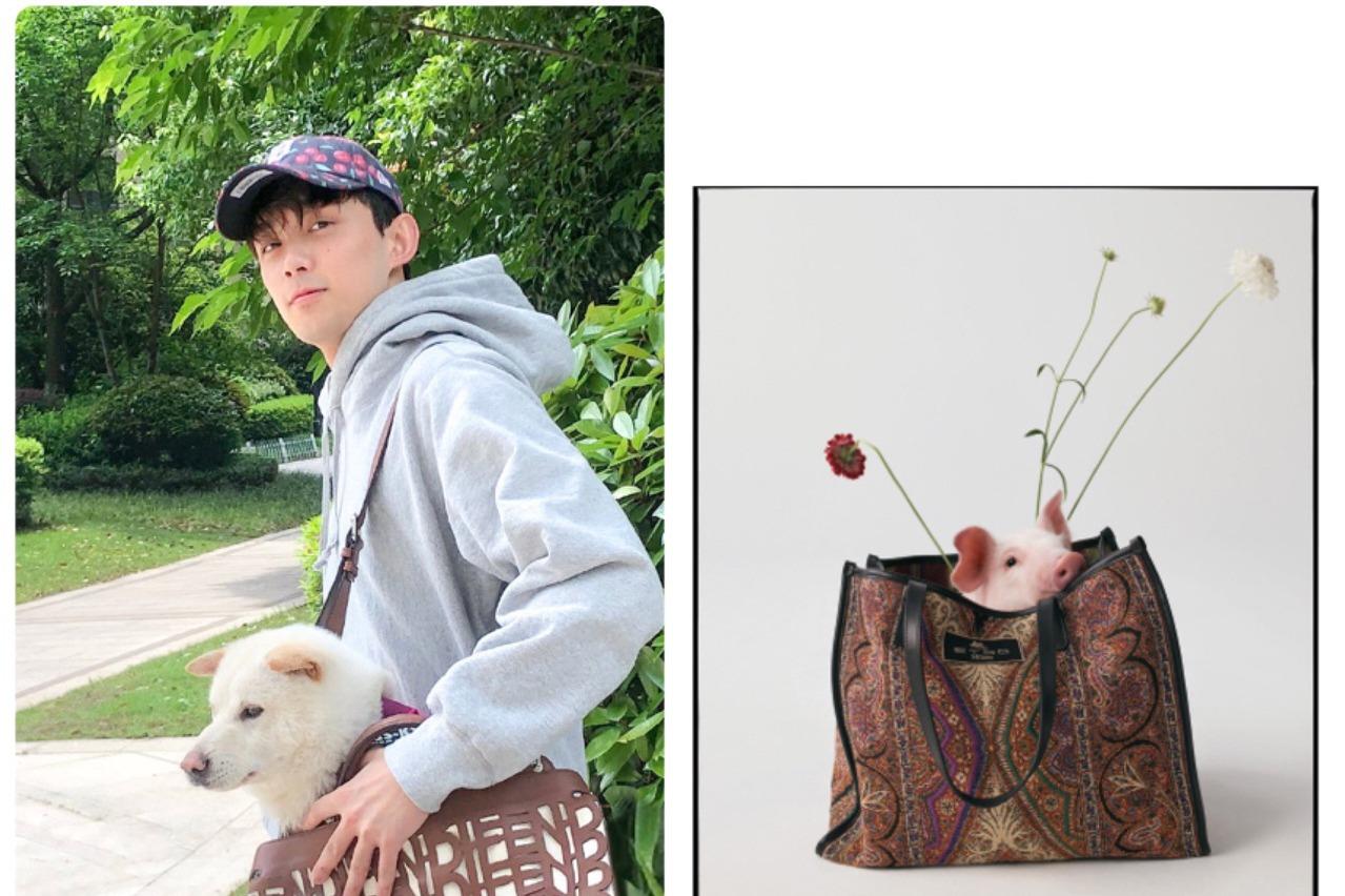 吳磊FENDI名牌包呵護汪星人 ETRO手袋探出頭的是小豬