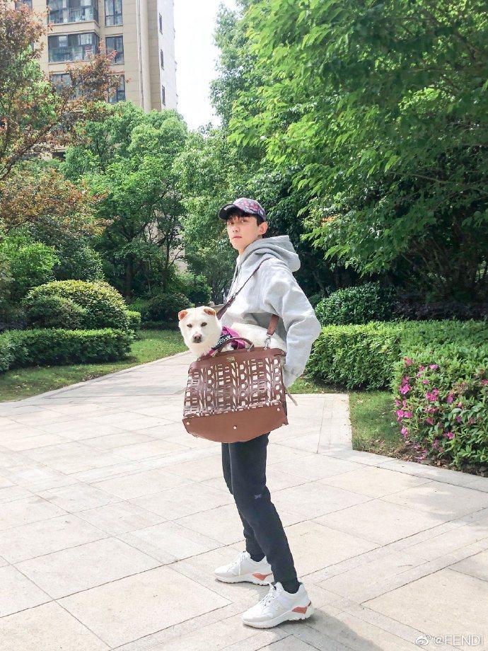 吳磊背著Peekaboo雷射切割皮革包款帶汪星人出門溜達。圖/取自微博