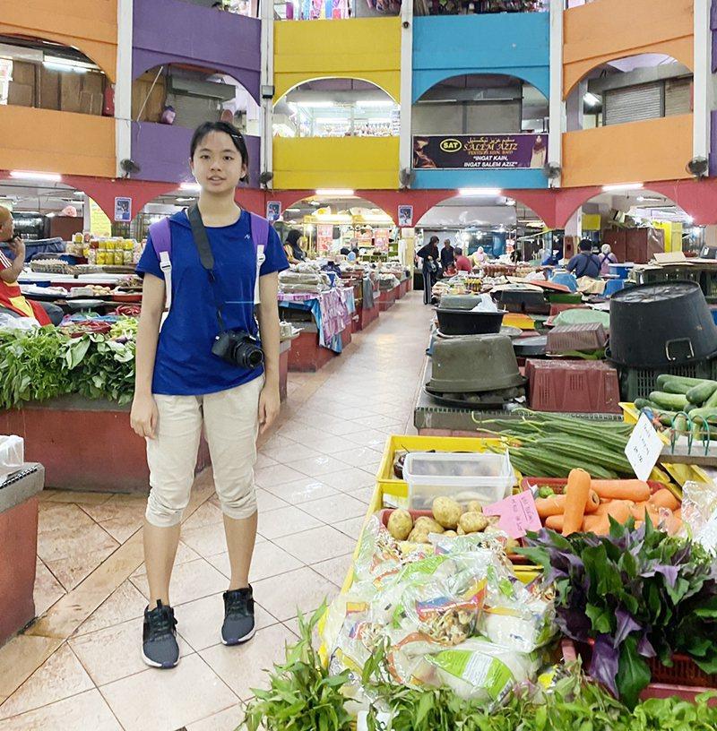 陳翎在母國市場尋找各種野菜並拍照。記者廖炳棋/翻攝