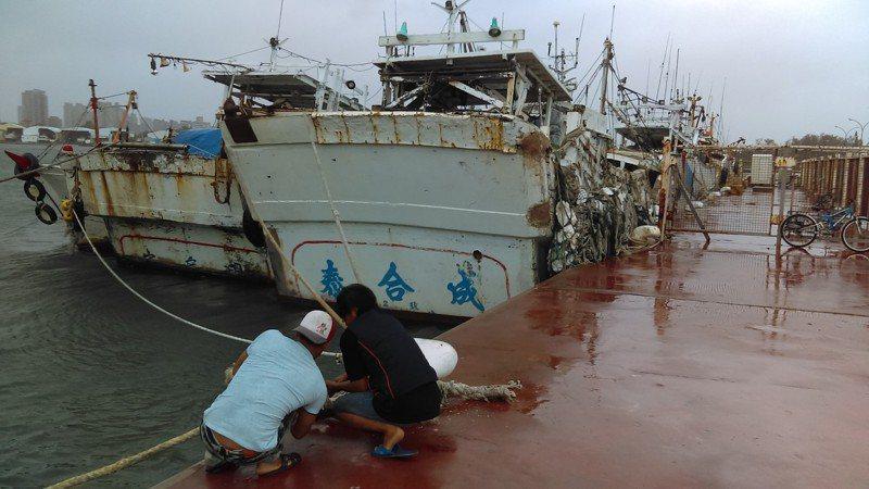 哈格比颱風來襲,台南市政府農業局繃緊神經,呼籲港區漁船加強繫纜固定。記者謝進盛/翻攝