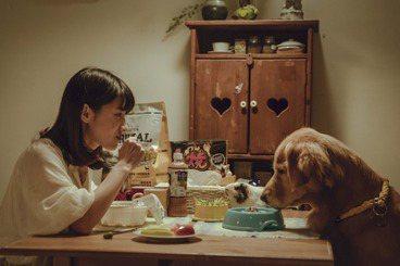 《黑喵知情》菜鳥編劇養成記:如何在「寵物溝通」田調找到共感?
