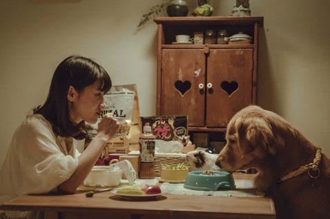 《黑喵知情》菜鳥編劇養成記:如何在「寵物溝通」田調中找到共感?