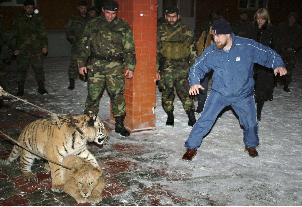 自詡高高在上的小卡迪羅夫,對於「公開侮辱」等殘酷的統治手段格外樂此不疲。 圖/車...