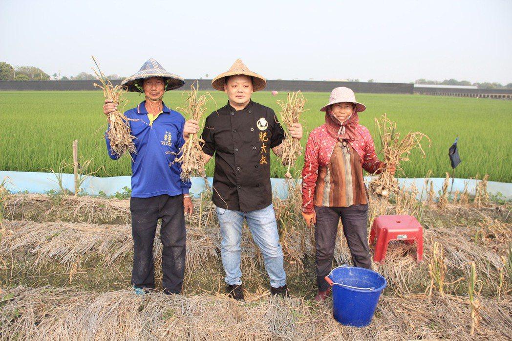 肥大叔下鄉和農民一起採蒜頭。