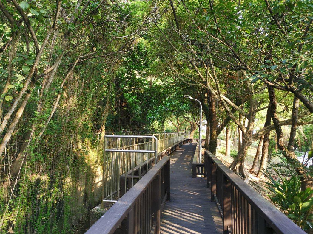 從事郊野活動,應選擇多山林的生態公園踏青,避免中暑或熱傷害。圖/王錫璋提供