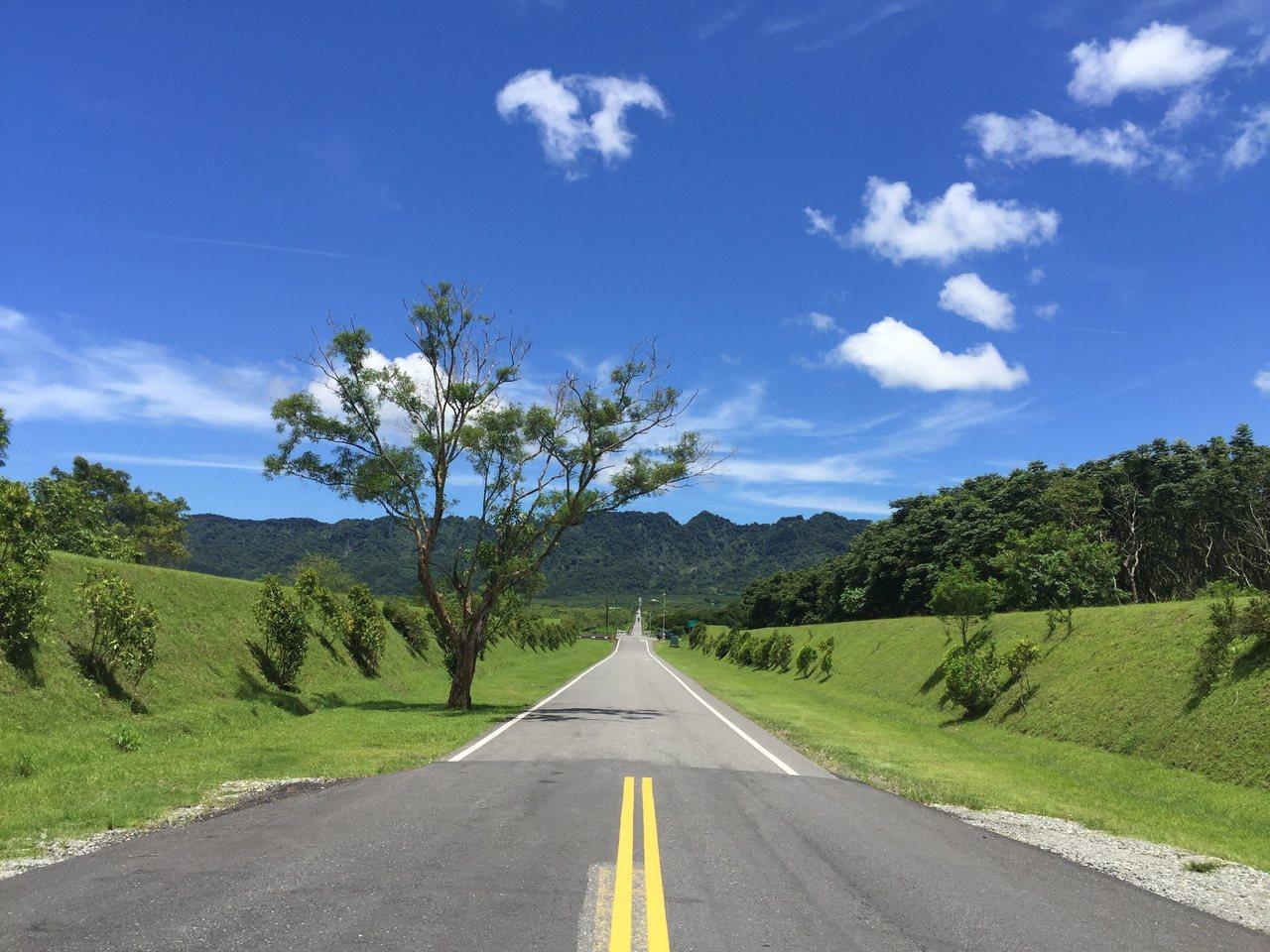 大農大富平地森林園區入口處就是一條筆直道路,被譽為「花蓮伯朗大道」。 圖/花蓮林...