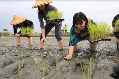 富邦員工一日農夫體驗活動,透過親身感受農作耕耘,瞭解到每一份食材得來不易與珍貴。