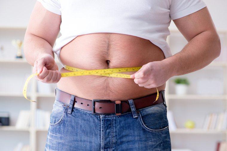 肥胖示意圖/ingimage