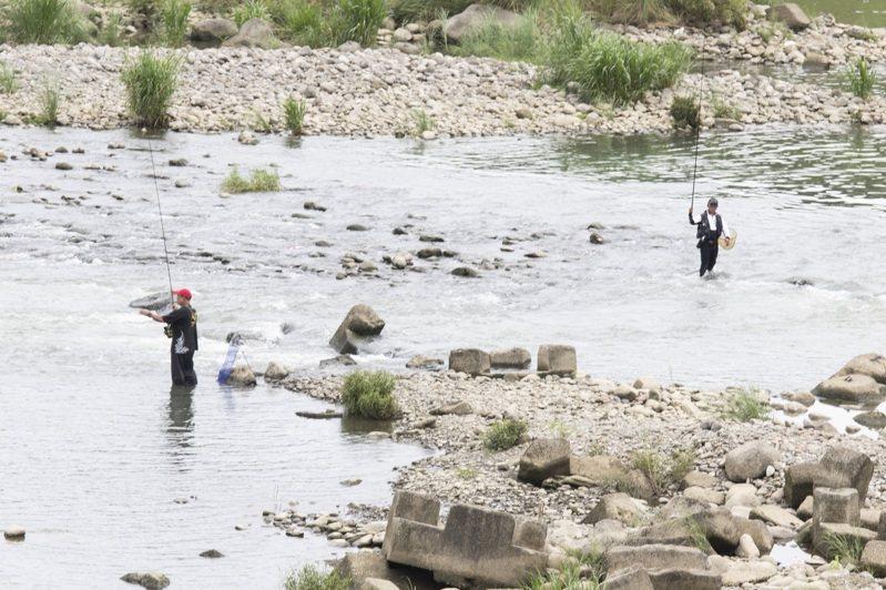 近幾年因香魚復育工作,讓新店溪再現香魚蹤跡,更有釣客在溪面上釣香魚。記者王敏旭/攝影