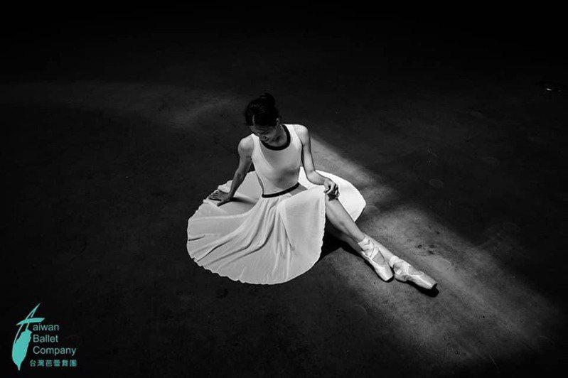 台灣芭蕾舞團本月22、23日到高雄衛武營榕樹廣場演出,可免費觀賞。圖/台灣芭蕾舞團提供