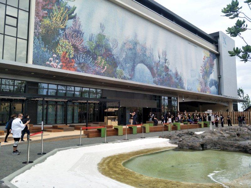 桃園市青埔X-park八景島水族館,13展區水中生物最吸睛。 圖/曾增勳 攝影