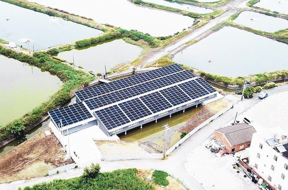 臺鹽綠能漁電共生示範基地可望每年發電達22萬度。 臺鹽綠能/提供