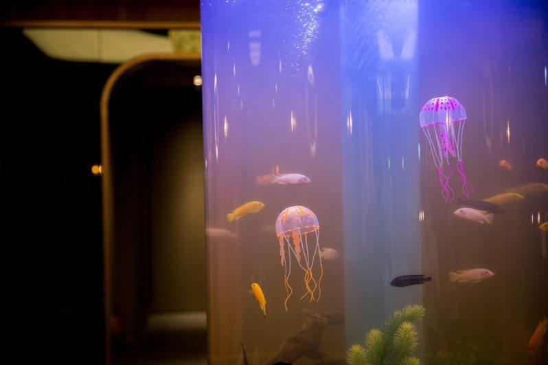 飯店「Cabin Zone」設有小小水族箱,讓大人小孩都能欣賞海洋生物。 攝影:蕭芃凱、和逸飯店桃園館提供