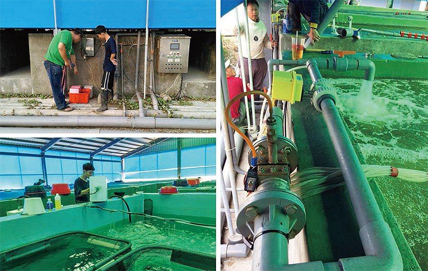 現場操作實況(左)、補水閥、增氧閥安裝設(右)。 農科院/提供