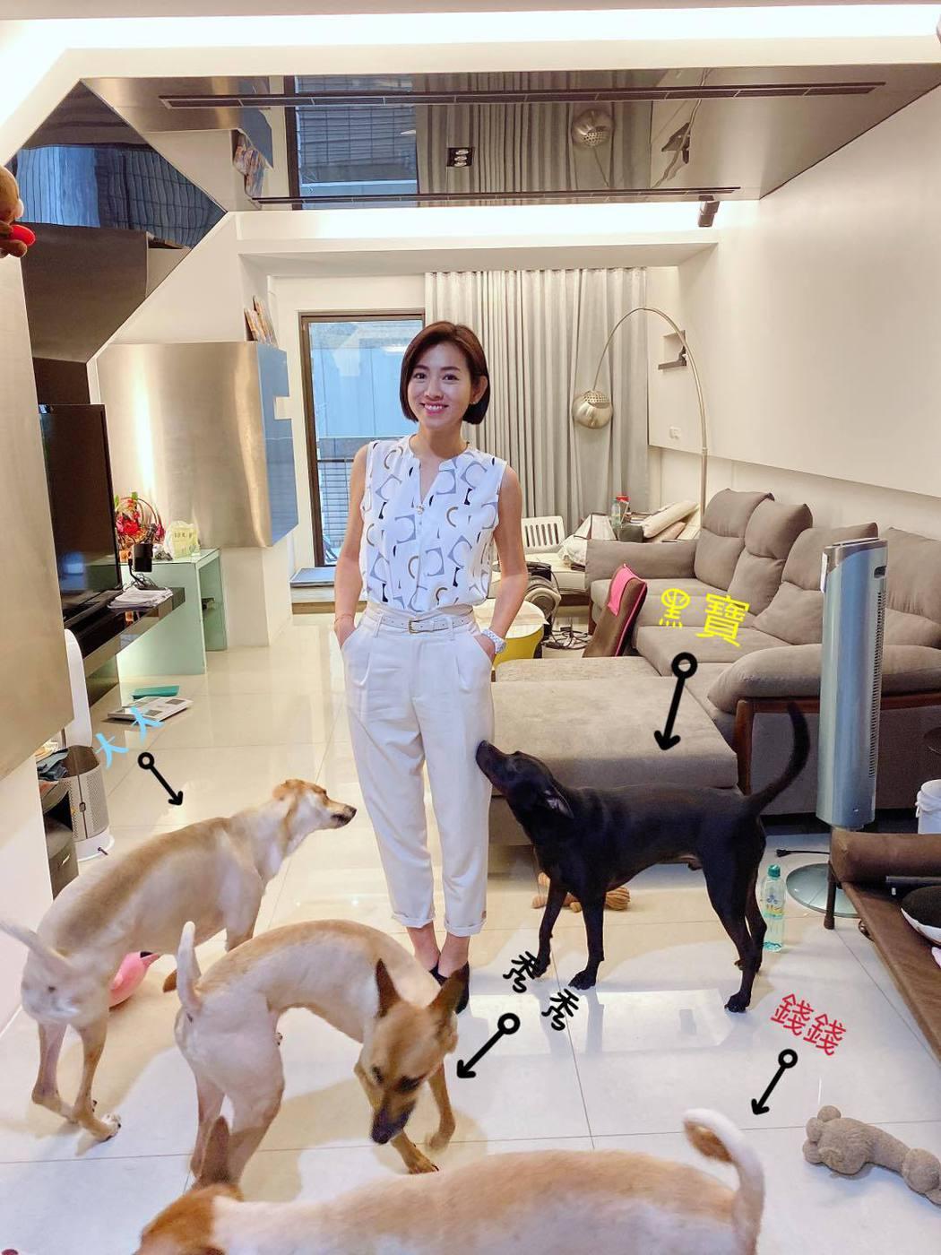 米可白已安頓好離婚後的新住處,確實「跟狗住」。圖/摘自臉書