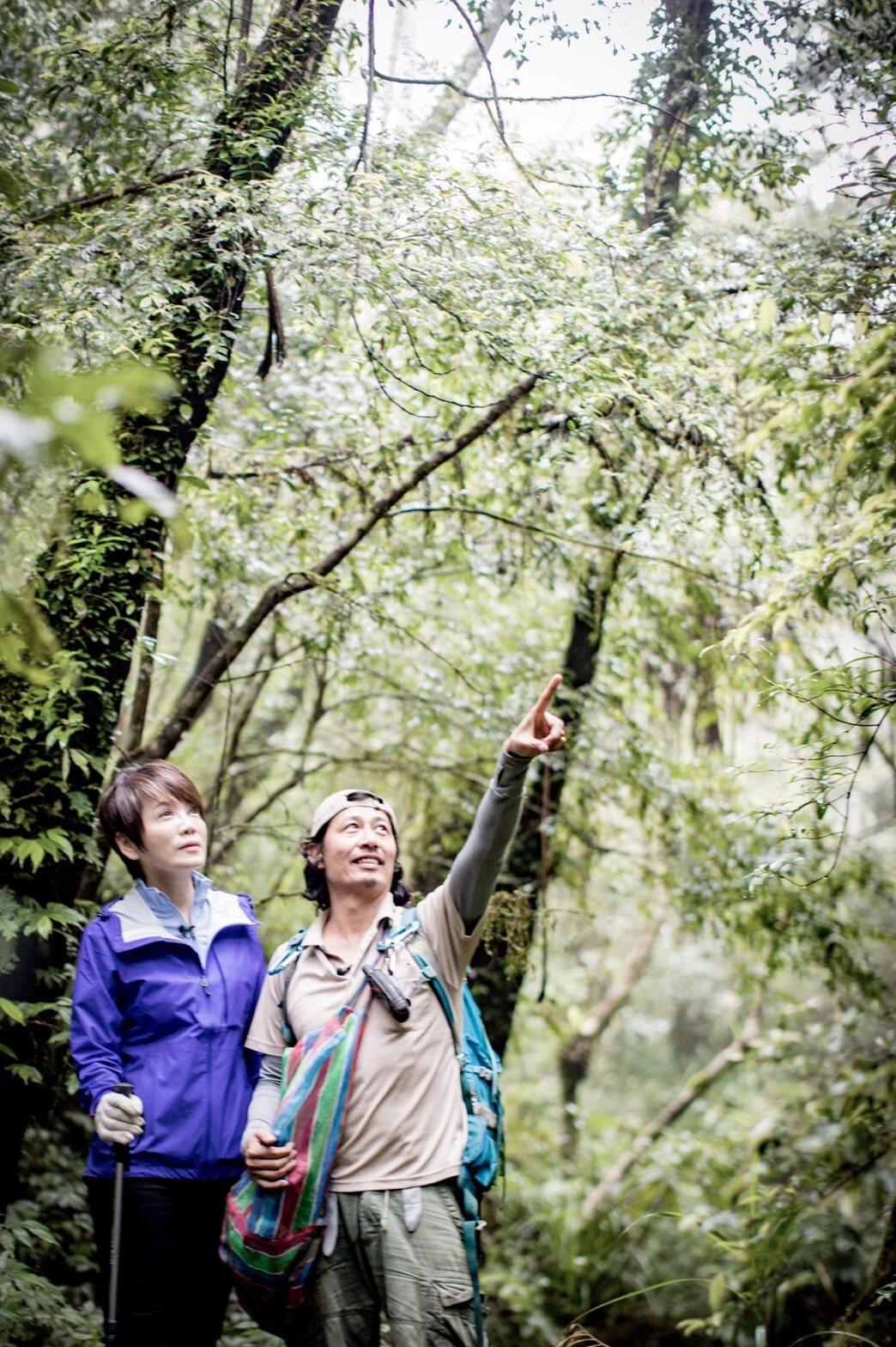 陳雅琳在家休養仍用聽力為節目把關。圖/壹電視提供